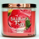 Bath and Body Works Bahama Fizz Candle - 14.5oz