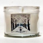 Slatkin and Co. Winter Mini Candle - 1.3oz