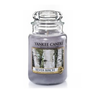 Yankee Candle Silver Birch Candle - 22oz